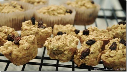 Oatmeal Pumpkin Muffin Cakes